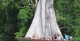 Canoe Trip, Ararinha Amazon Lodge