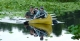 Canoeing in the Pantanal Wetlands