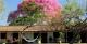 Fazenda Santa Teresa, SouthWild Pantanal Lodge
