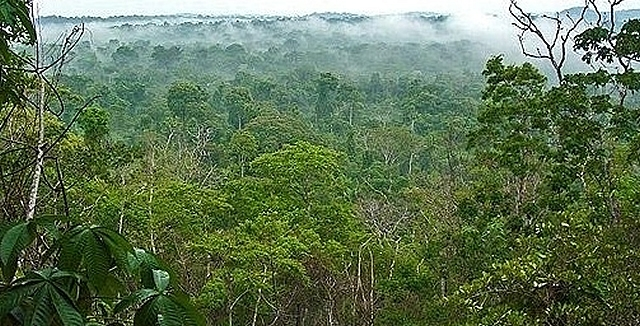 Alta Floresta, Mato Grosso
