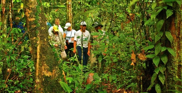 Jungle Hike - Amazon Clipper Cruise