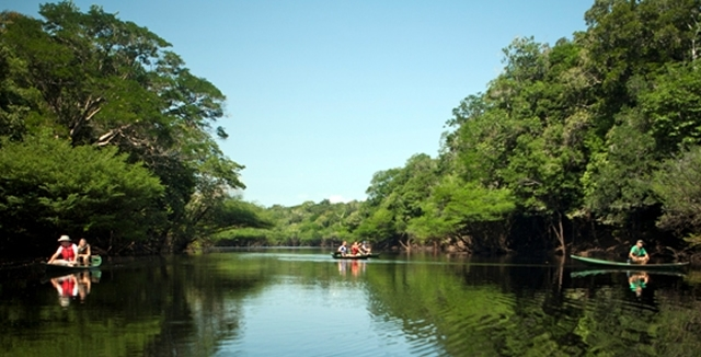Canoeing - Anavilhanas Jungle Lodge
