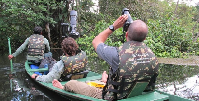 Wildlife Observation from Uacari Lodge Boat