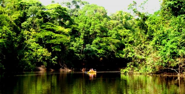 Amazon Kayak Trip, Palmari Nature Reserve