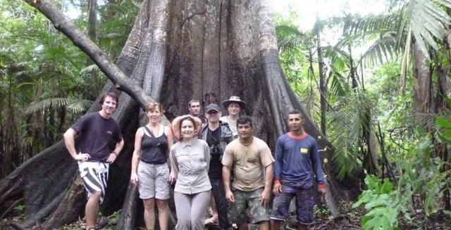 Rainforest, Amazon Gero Tours