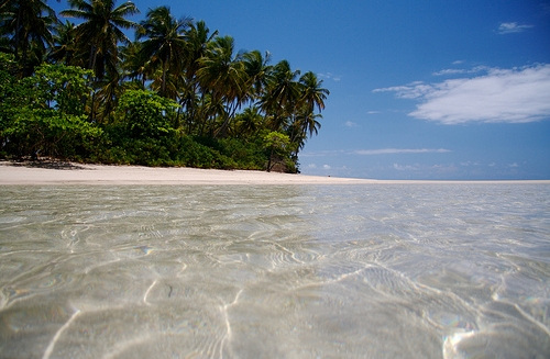 The Crystal Clear Waters of a Boipeba Beach