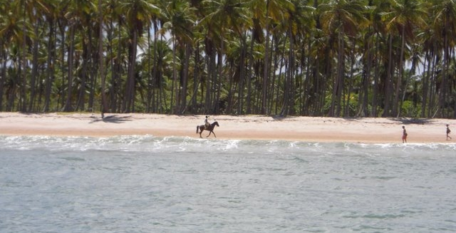 Horse-Riding along a Morro de Sao Paulo Beach