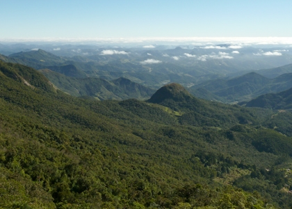Pico da Caledonia, REGUA Atlantic Rainforest Lodge