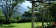 Gardens, REGUA Atlantic Rainforest Lodge