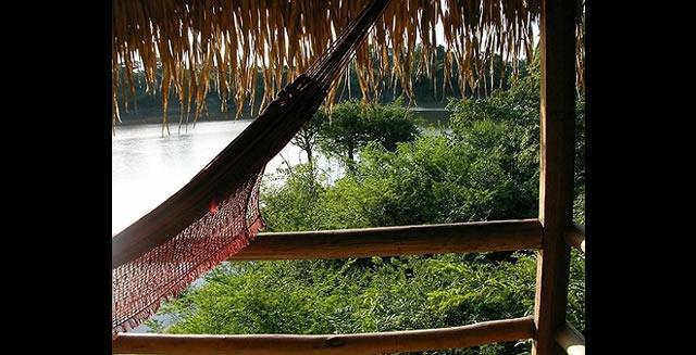 View from the Balcony, Juma Lodge, Amazon