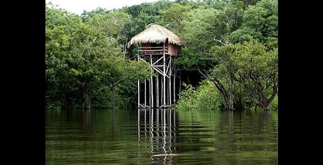 Bungalow, Juma Lodge, Amazon
