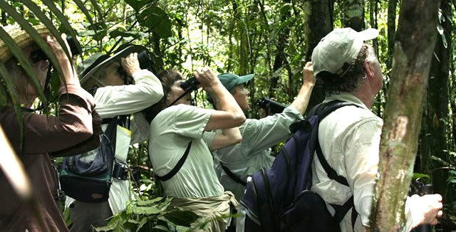Jungle Hike - MY Tucano Amazon Cruise