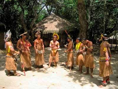 Jaqueira Indigenous Reserve, Bahia