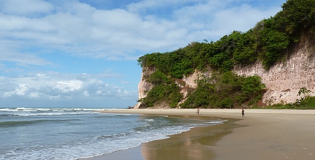 Dolphins Bay, Praia da Pipa