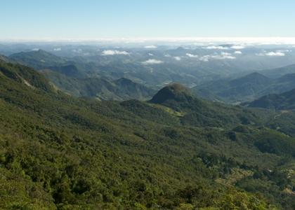 Pico da Caledonia, REGUA Atlantic Rainforest Lodge